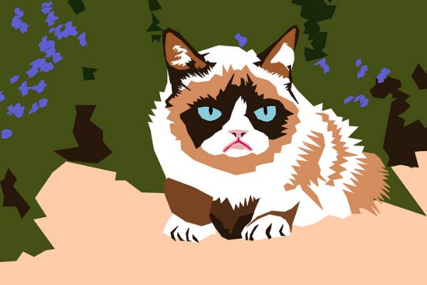 Internet Sensation Grumpy Cat Passes Away At The Age Of 7