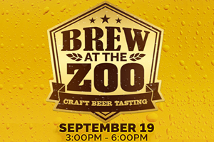 Brew at the Zoo Craft Beer Tasting September 19th