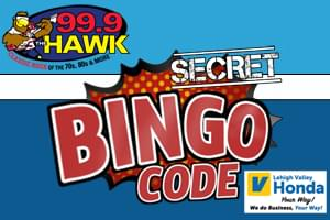 999 The Hawks Secret Bingo