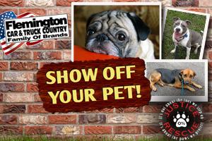 Show Off Your Pet!