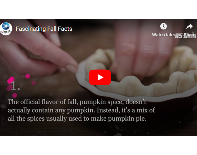 Fascinating Fall facts you probably didn't know!