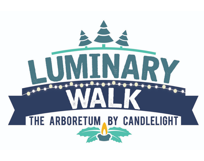 holiday luminary walk