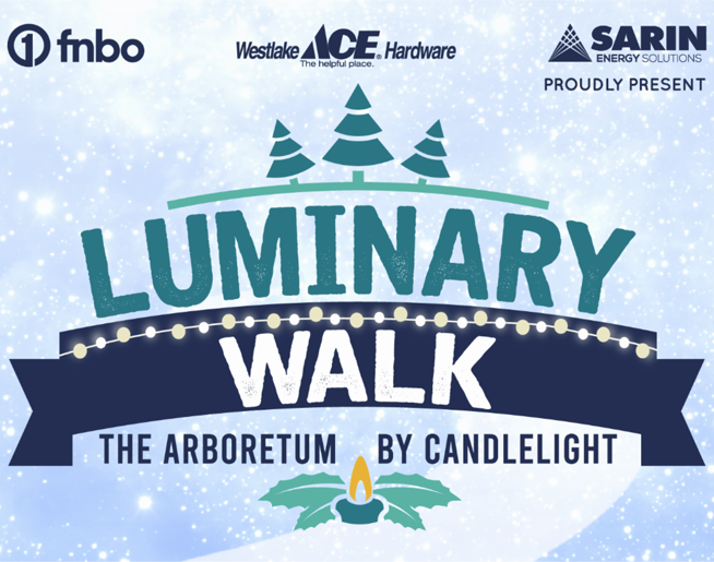Luminary Walk
