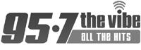 Vibe-Logo