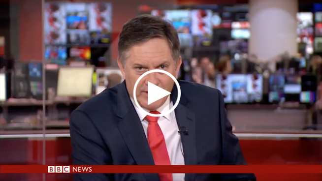 BBC news anchor gives 'most unenthusiastic news report ever' on surfing dogs