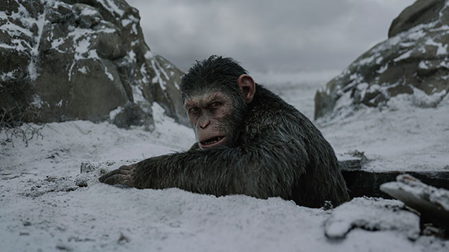 'War for Planet of the Apes' reaches beyond blockbuster status