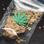 Decriminalizing Drugs with Drug Policy Alliance