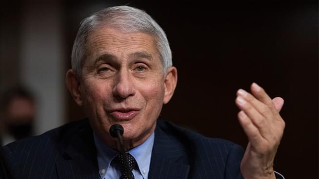 Trump's War with Dr. Fauci