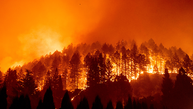 Trump Approves Request After Initial Denial of Emergency Wildfire Funding to California