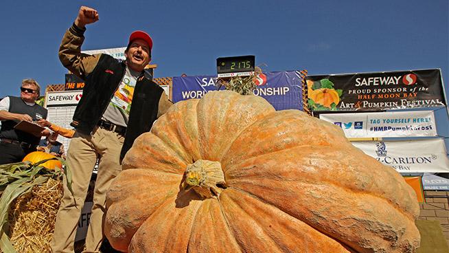 World Championship Pumpkin Weigh-Off in Half Moon Bay Announces Winner