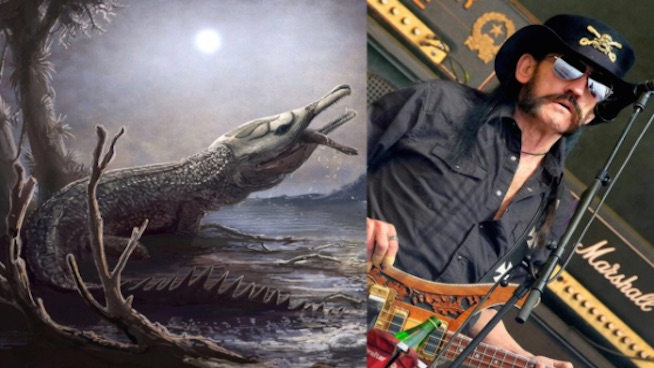 Prehistoric predator named after Lemmy Kilmister
