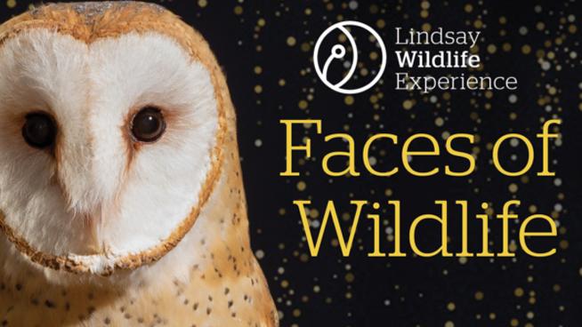 February 29: Faces Of Wildlife Gala/Fundraiser