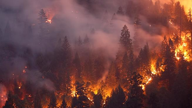 Ways to take action and protect yourself from wildfire smoke