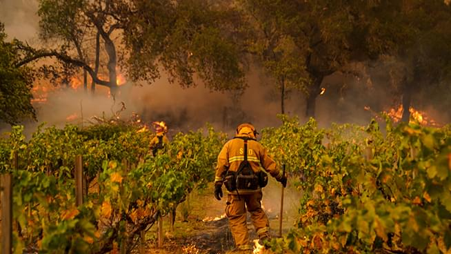Cal Fire Issues Evacuations Orders for Parts of Napa, Red Flag Warning in Affect for Bay Area Through Friday