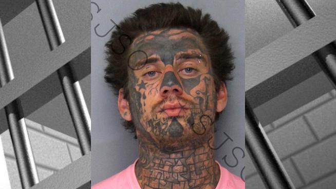 One Man With Nine Increasingly Bad Mugshots
