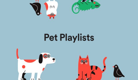 Spotify Has Playlists For Your Dog, Cat And Hamster