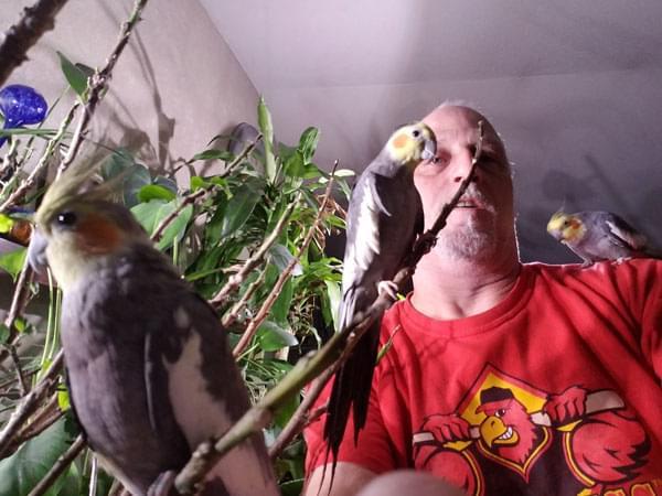 Listener Robert and his birds