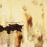 <em>The Downward Spiral</em> - Nine Inch Nails