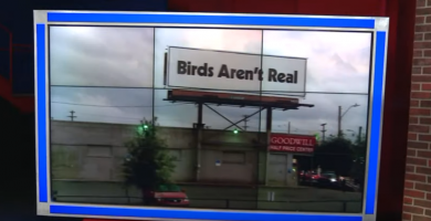 "VIDEO: ""Birds Aren't Real"" Campaign Is Proof That 2019 Has Gone Off The Rails"