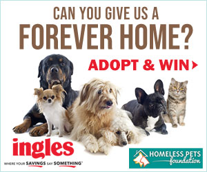 INGLES PET ADOPTION