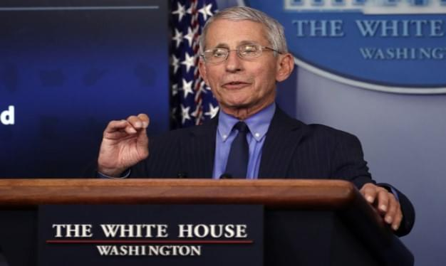 Fauci to resume virus updates in White House