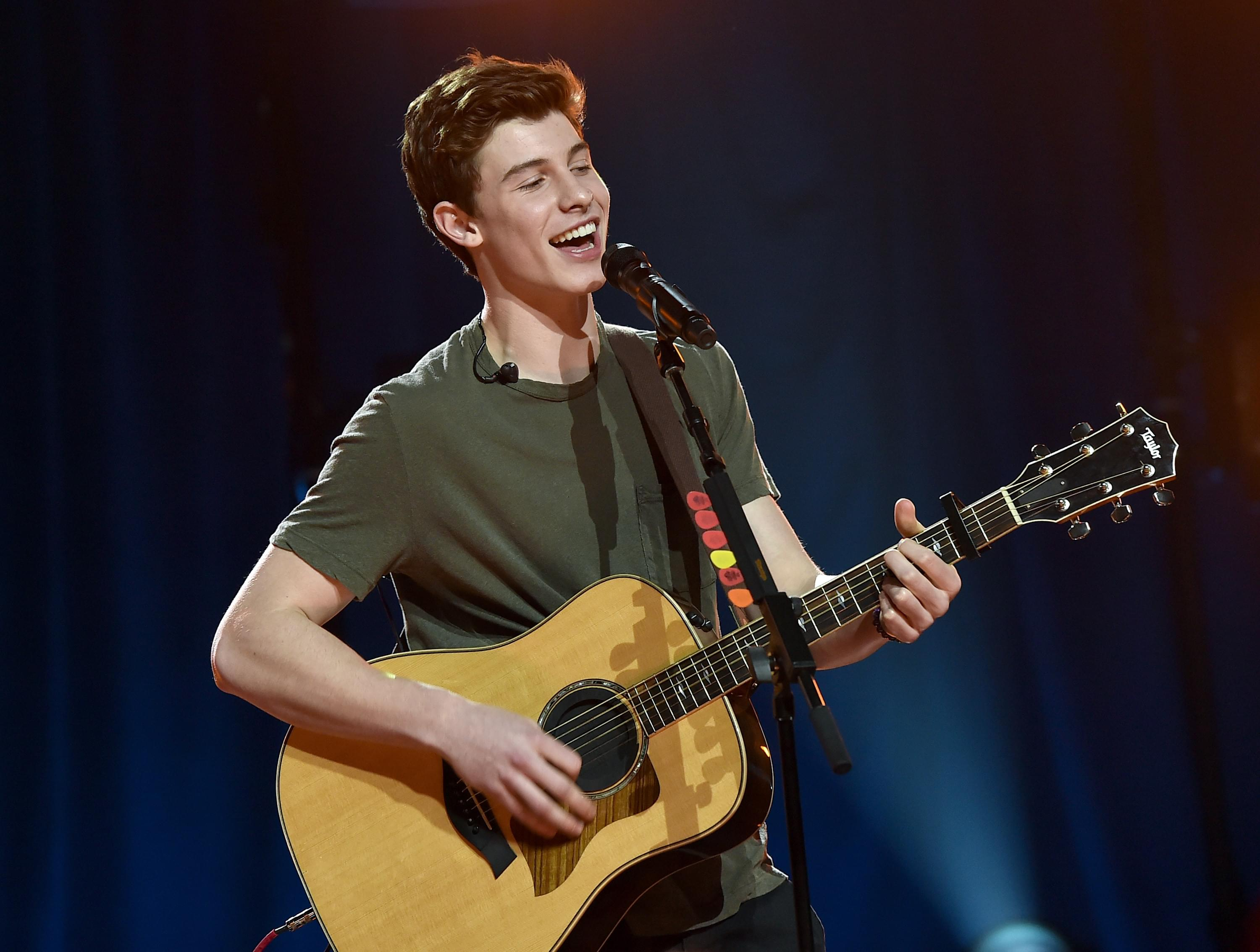 Shawn Mendes Announces Livestream Benefit Concert