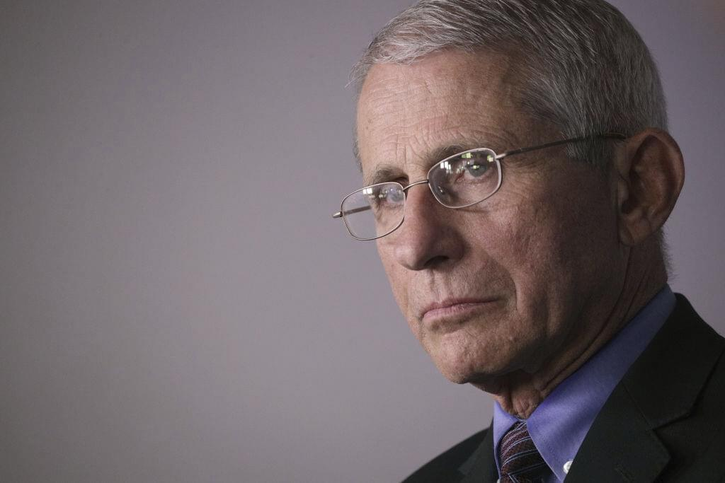 Dr. Fauci Says Concerts Could Be Back In The Fall