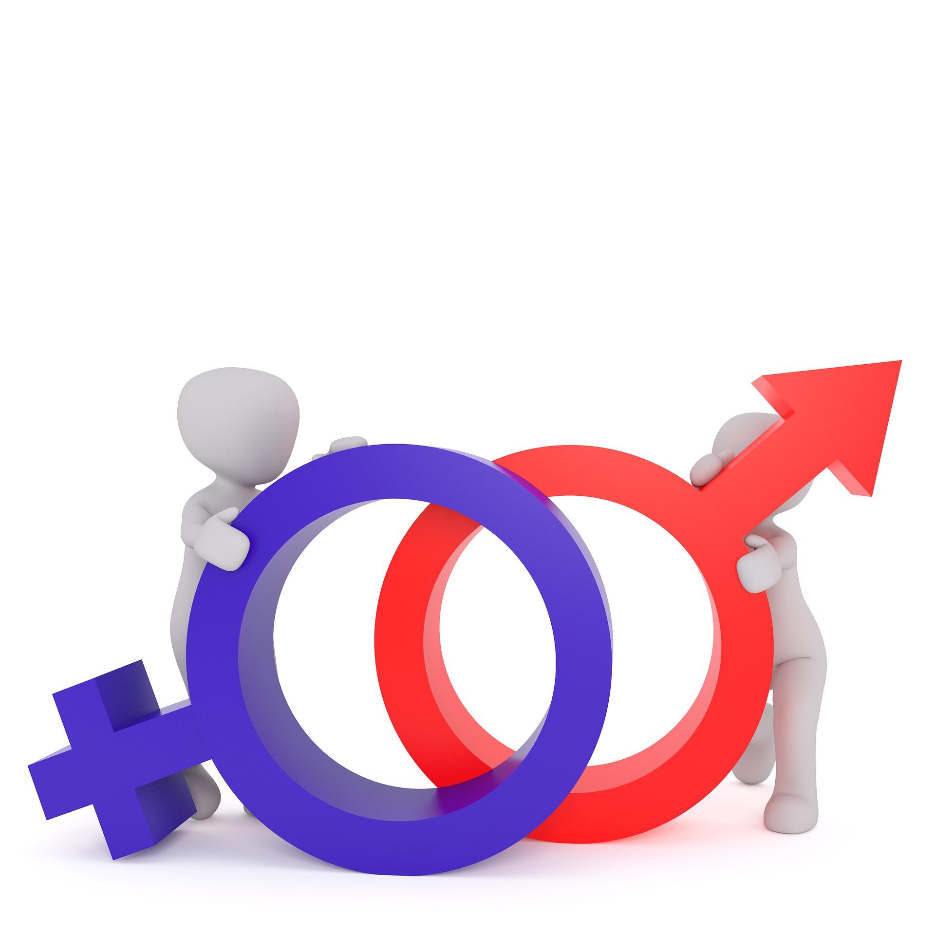 equality-2110559_1920