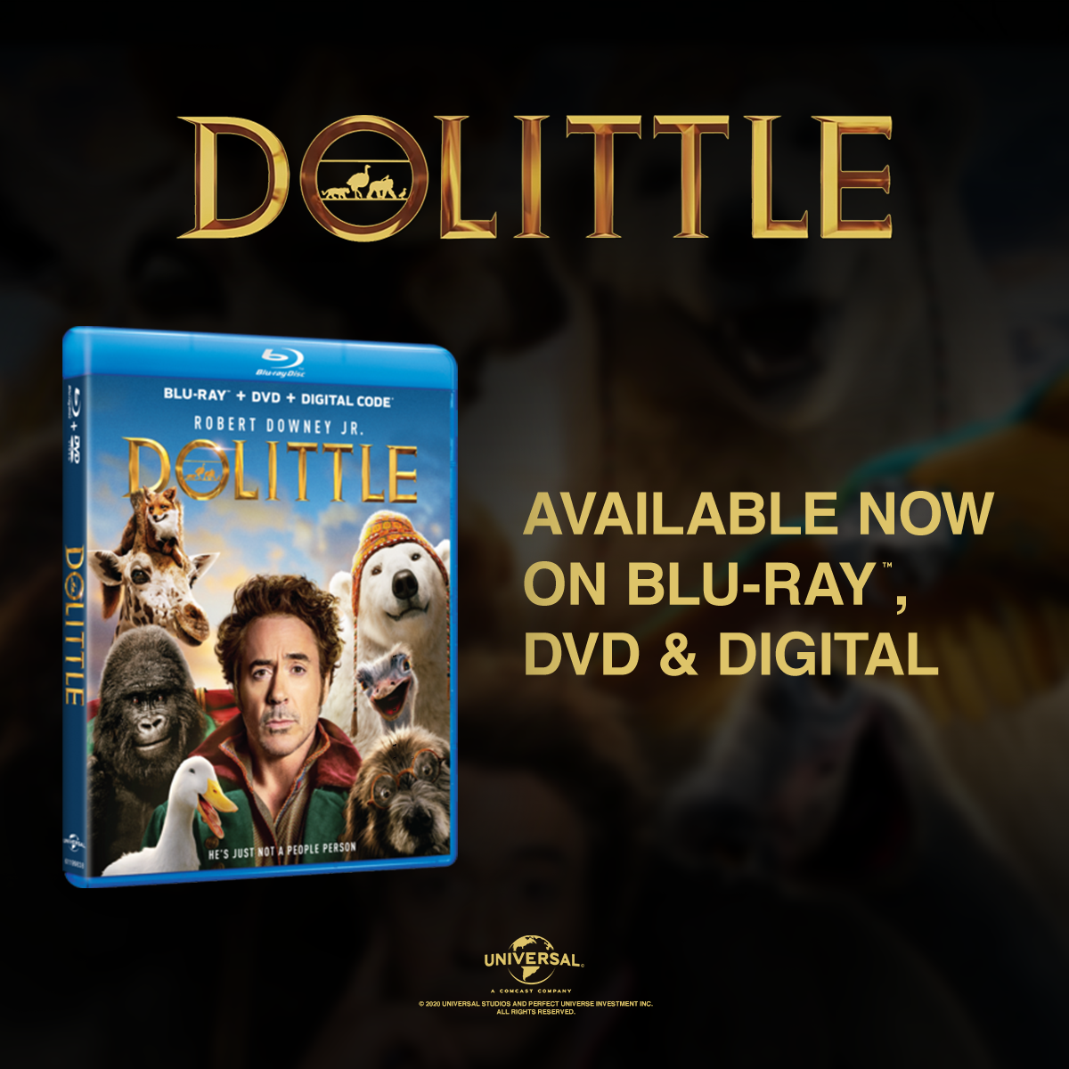 Win a Digital Download of Dolittle!