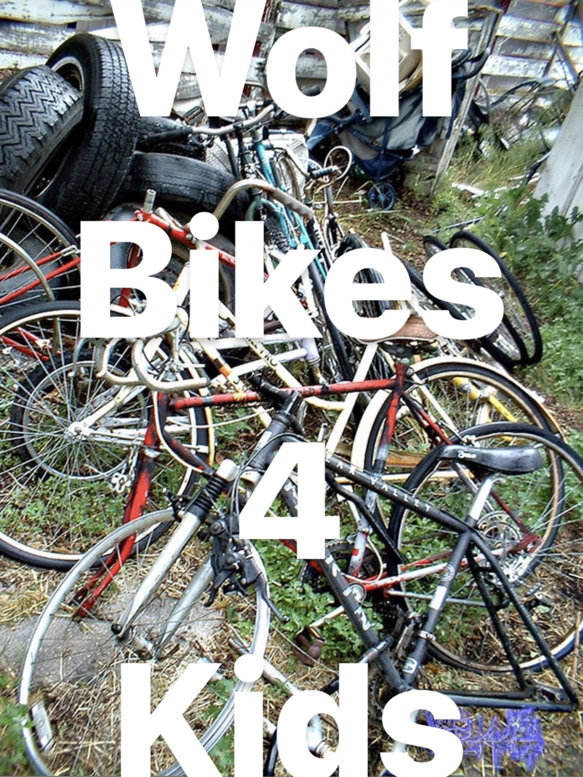 Wolf Bikes 4 Kids