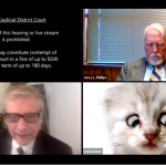 VIDEO: 'I'm Not a Cat,' Says Lawyer Having Zoom Difficulties