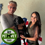 Pet for a Vet –  Meet Hawkeye the Service Dog in Training
