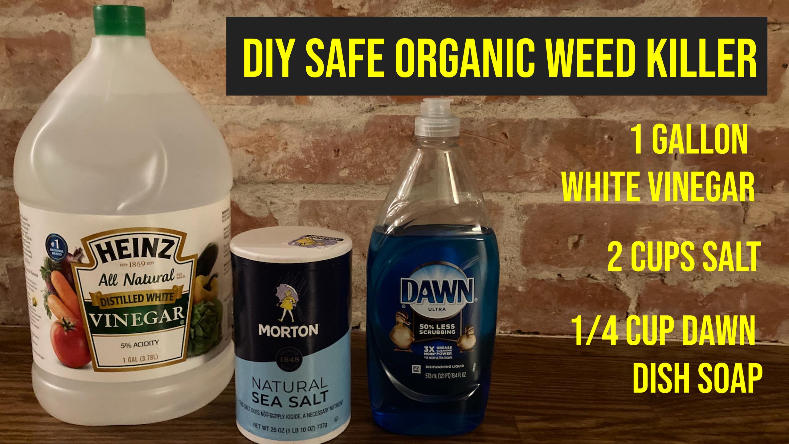 Hawkeye's Latest DIY Video – His Safe Homemade Weed Killer