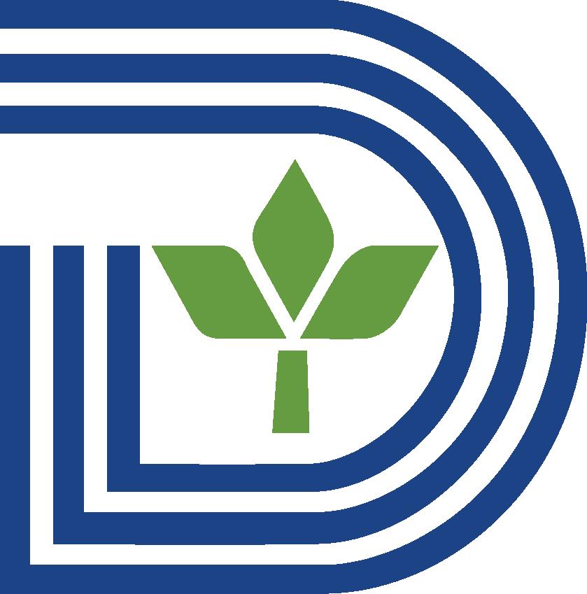 City of Dallas Logo