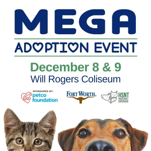Humane Society Of North Texas And City Of Fort Worth To Host Mega Adoption Event News Talk Wbap Am