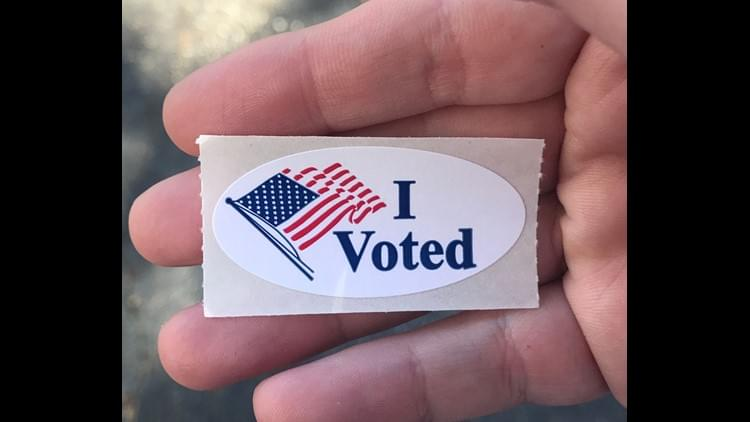 What Texans Are Voting On This Election Day 2019