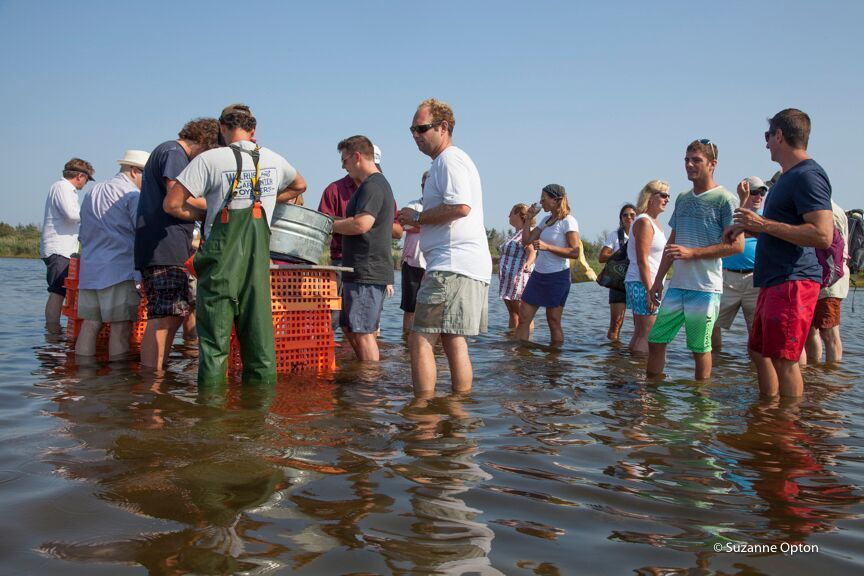 Walrus and Carpenter Oysters announces Farm Dinner series