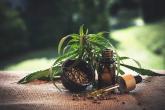 Idaho anti-drug constitutional amendment rejected