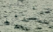 More rain expected for area thru Tuesday