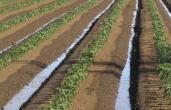 Nampa irrigation season set to begin April 1st