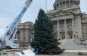 Idaho's Capitol Christmas Tree Now on Display