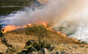 Stage 1 fire restrictions go into effect today for Boise and Payette fire restriction areas
