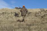 Idaho Fish and Game Hunter Education classes resume