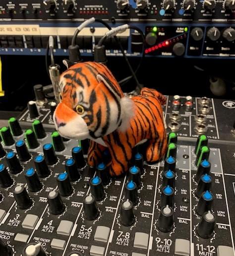 Hilarious Tiger King quarantine!