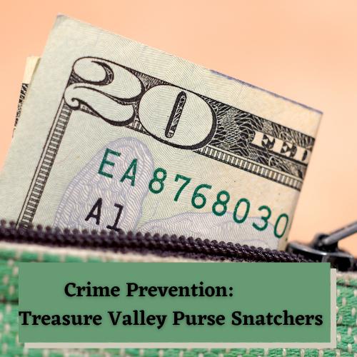 Crime Prevention Treasure Valley Purse Snatchers