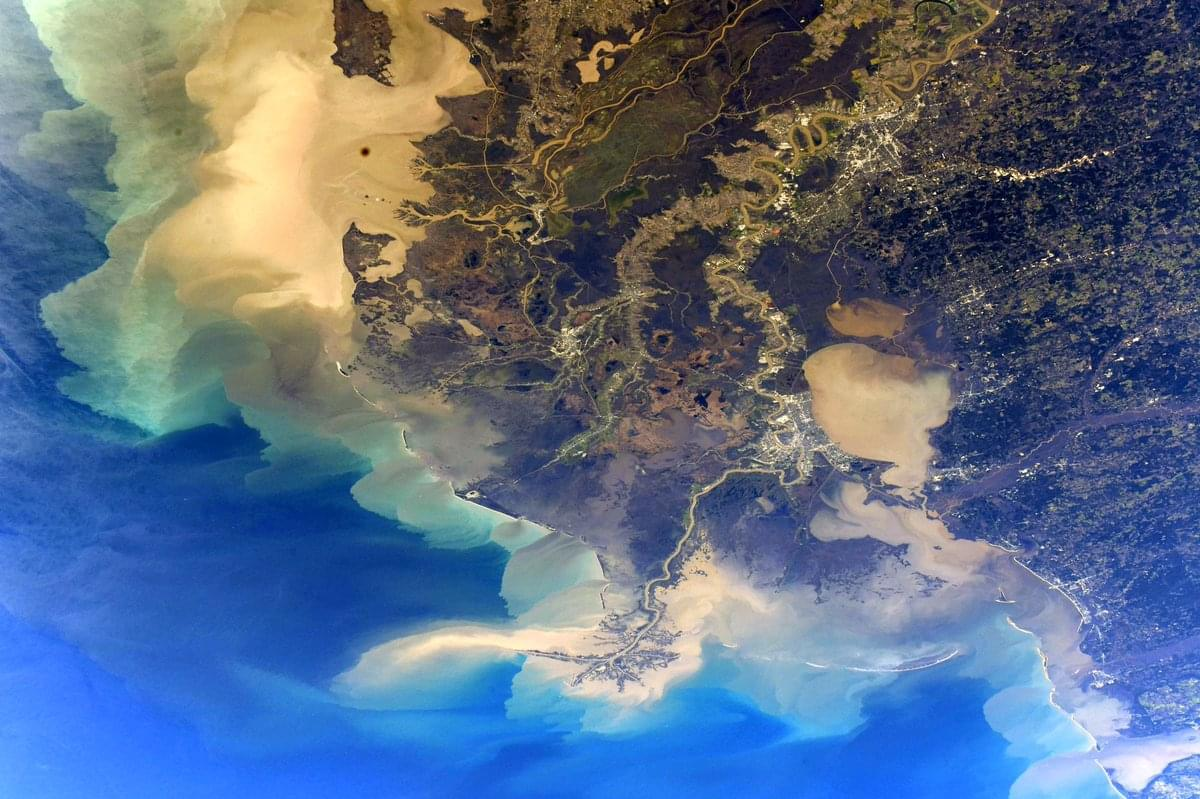 Astronaut shares a photo of Louisiana from Space!