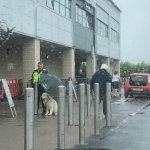 A Supermarket Security Guard is Going Viral for Holding an Umbrella Over Dog Standing in the Rain
