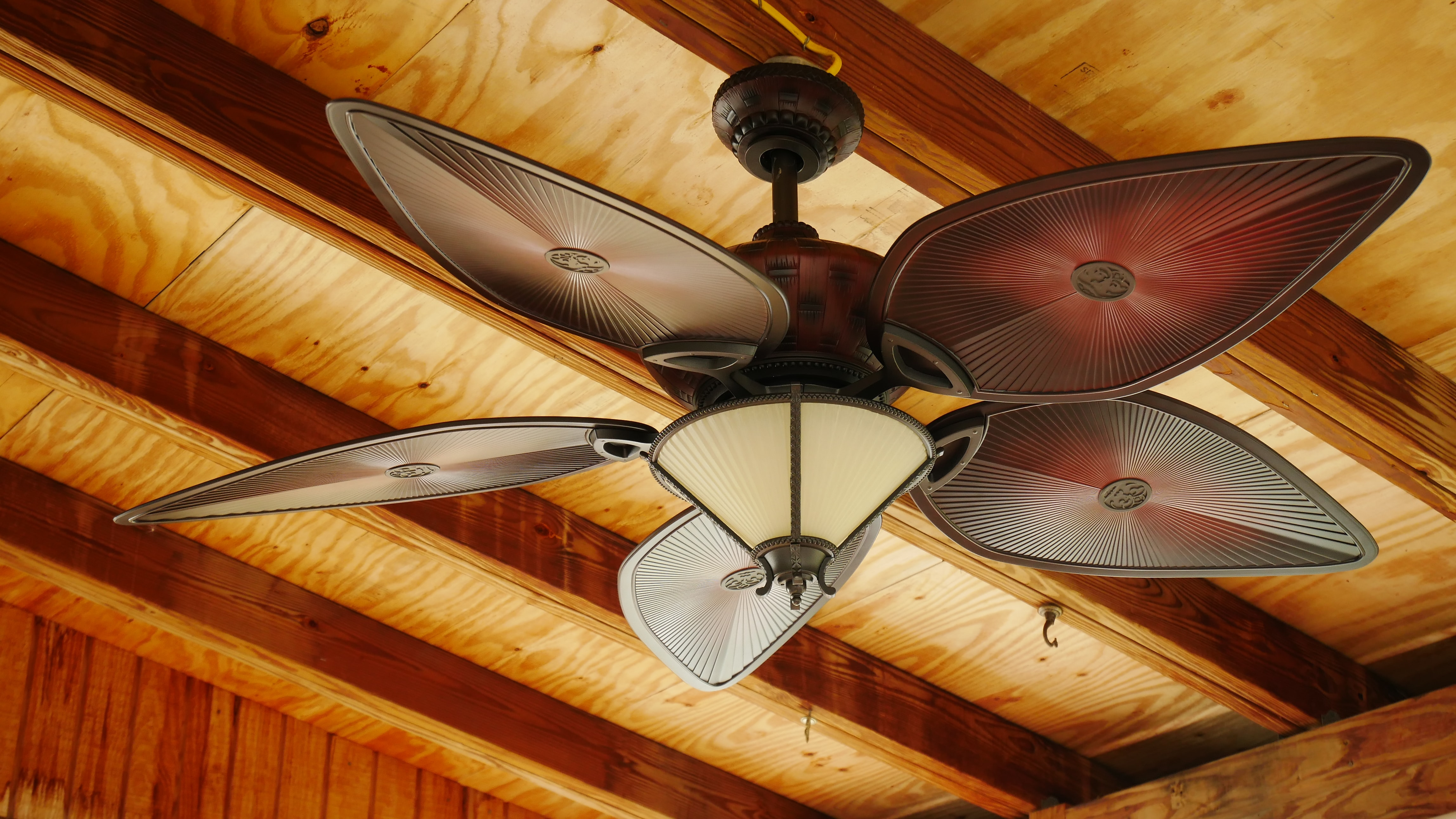It's Time to Reverse Your Ceiling Fans