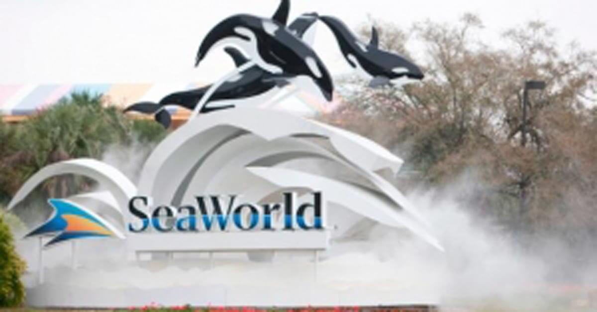 SeaWorld trainers to stop riding on dolphins