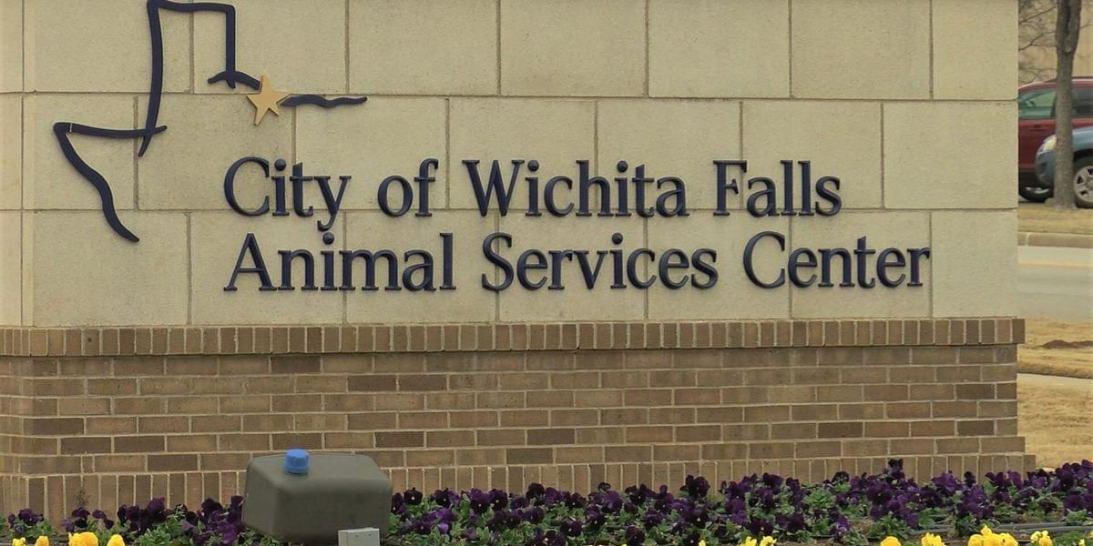 Animal Services Center Operating By Appointment Only